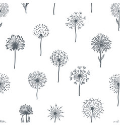 dandelion flower monochrome seamless pattern vector image