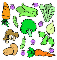 Doodle of vegetable set colorful vector