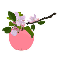 Pink apple and branch in blossom flat vector