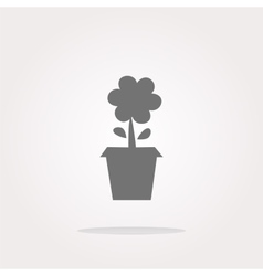 Plant in flower pot button isolated on vector image