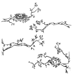 Set of hand drawn branches vector