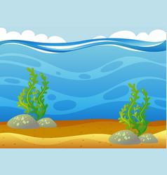 Underwater scene with seaweeds vector