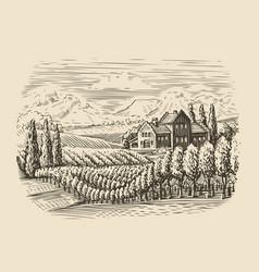 Vineyard landscape hand drawn sketch vector