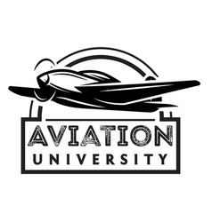monochrome with airplane vector image vector image