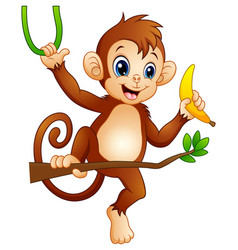 Cartoon monkey on a branch tree and holding banana vector