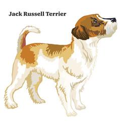 Colored decorative standing portrait of jack vector