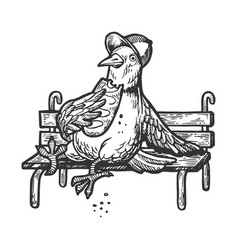 dove pigeon eat bread on bench engraving vector image