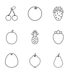 Farm fruits icons set outline style vector image
