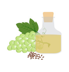 grapeseed organic oil in glass bottle vector image