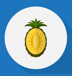 of fruits symbol on pineapple vector image