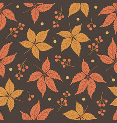 Pattern with virginia creeper leaves and berries vector