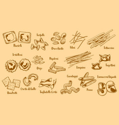 Types of popular italian pasta vector