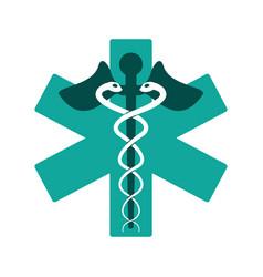caduceus medicine care symbol vector image