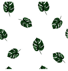 monstera pattern vector image vector image