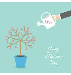 Happy Valentines Day Love card Tree in the pot vector image vector image