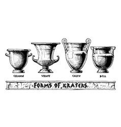 Forms of kraters Greek vessel shapes vector image vector image