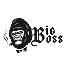 big boss angry gorilla with a cigar vector image