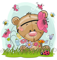 Cute cartoon teddy on a meadow vector