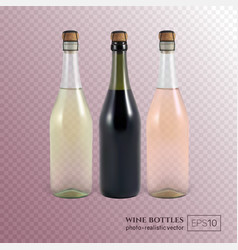 Red white and rose wine bottles on transparent vector