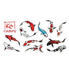Set koi carps japanese fish on white vector