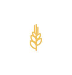 wheat grain agriculture mono line logo design vector image