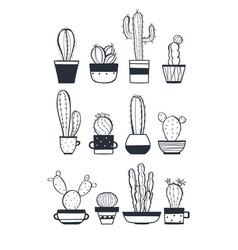 cute cactus set vector image