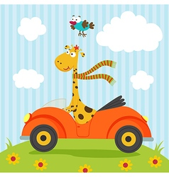 giraffe and bird go by car vector image