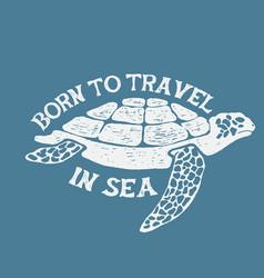 sea turtle vintage label vector image