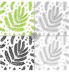 set of 4 seamless floral pattern hand vector image