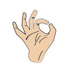 hand man ok gesture design vector image