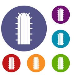 Cereus candicans cactus icons set vector
