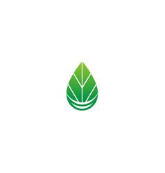 green leaf droplet bio ecology logo vector image