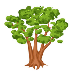 green tree icon bright landscape and wood vector image