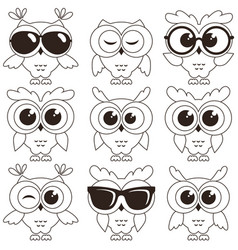 Set cool owls isolated on white background vector