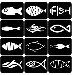 Set of creative white fish icons on black vector image