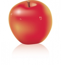 apple with water drops vector image vector image