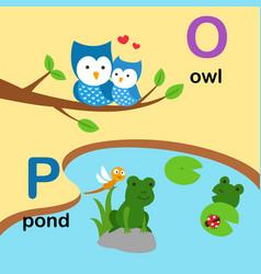 alphabet letter o-owl p-pond vector image vector image