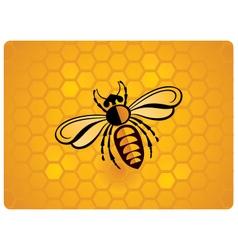 Bee icon on honeycomb background vector
