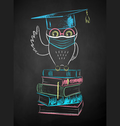 Owl sitting on books and wearing mask vector