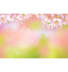 Spring vector
