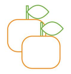 two orange fruit healthy citrus food vector image
