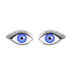 an eyelid with long eyelashes vector image