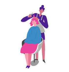 Beauty salon procedures for hair hairdresser and vector