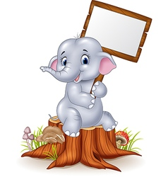 Cute baby elephant holding blank sign on tree stum vector image