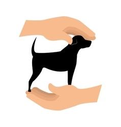 Cute dog isolated icon vector