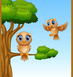 Cute owl cartoon on a tree branch vector