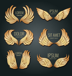 Golden wing logo set angels and bird elite vector