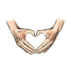 hands in the shape of heart from a splash of vector image