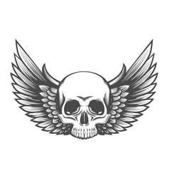 Human skull with wings engraving vector