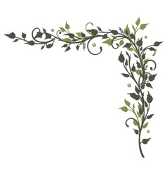 Leaves border tendril vector